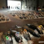 グリーンピース・ジャパンは『マグロがいる海がいい』キャンペーンサイトで、アンケート調査の詳細レポートを公表している