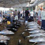 国内水産会社6社が「太平洋クロマグロ保全の誓い」に賛同した Image credit:WWF Japan